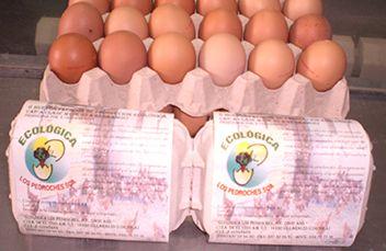 calidad ecologica los pedroches huevos ecológicos de córdoba